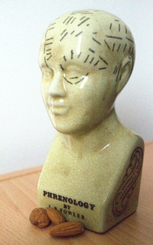 Phrenology head and almonds